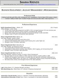 sales resume sales lead resume samples sales manager resume 2013