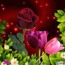 Good morning flowers gif, Beautiful ...