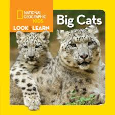 national geographic kids look and learn big cats