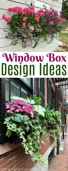 The 25 Best Wrought Iron Window Boxes Ideas On Pinterest Window