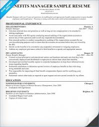 Resume Writing Examples | Publicassets.us