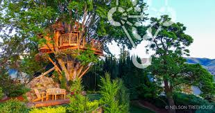 tree house pictures. Chelan-maple-nelson-treehouse.jpg Tree House Pictures