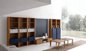 Modern Cabinets For Living Room 29 Contemporary Living Room Layouts By Mobilfresno