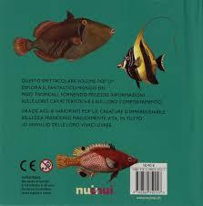 Pesci tropicali. libro pop up: amazon.it: david hawcock: libri