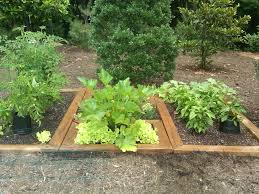 Small Picture A Simple Herb Garden Design for the Perfect Appetizer Unique