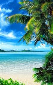50 free tropical beach live wallpaper