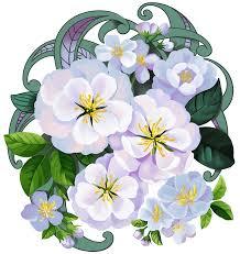 Weiße Blumen Clipart Kostenloser Download Creazilla
