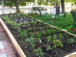 Full Size Of Backyard Small Vegetable Garden Design Layout Ideas ...