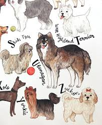 Dog Breed Chart Dog Art Print Dog Wall Art Dog Poster Dog Breeds Chart A To Z Of Dog Breeds Dog Owner Gift Dog Gift For Owners Dog Grooming Sign
