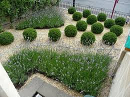 Small Picture Delighful Front Garden Design Plans Small Ideas Photo Album Home For