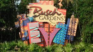 salute to summer flash busch gardens adventure island admission on until june 3