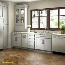 kitchen cabinets with glass on top luxury best way to organize kitchen cabinets pennyotcstock