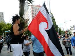 photo essay on the streets the auckland tpp protesters image