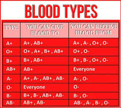 What Blood Type Can Donate To What Blood Type Google