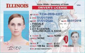 License Etc From Like Documents Passports Order Us Other Divers And