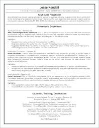 Nurse Objectives Resume Samples Student Objective Letter Source