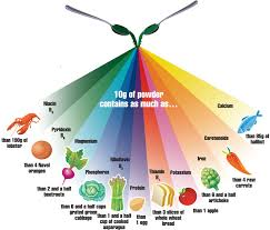 Nutrition Facts Superfood Viesun Spirulina
