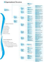 organizational structure jpg