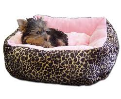 small dog beds on sale. Brilliant Small Puppy Beds For Small Dogs And Small Dog Beds On Sale K
