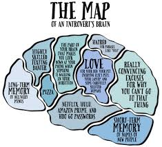 amber bird not ashamed introvert fictional map of an introvert brain