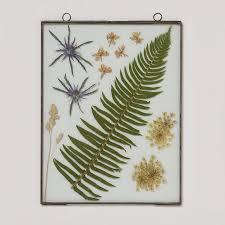 botanical glass frame available from terrain