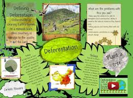 what are the causes and effects of deforestation causes of deforestation