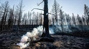 Tamarack Fire spreads to Nevada ...