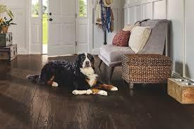 animal friendly furniture. Paragon Solid Hardwood With Diamond 10® Technology | SAKP59L403H Animal Friendly Furniture D