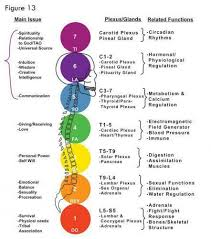 Here Is A Wonderful Chakra Correspondence Chart For You To