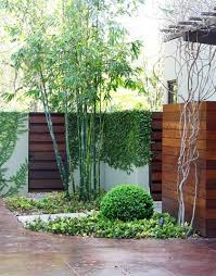 Small Picture Modernize Your Garden With Bamboo Backyard Modern landscape
