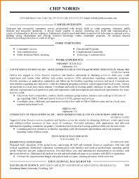 Lovely Resume Service New York City Contemporary Professional