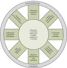 Professionalism In Nursing Socialization To Professional Nursing Nurse Key