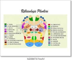 Free Art Print Of Reflexology Chart