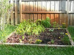 florida vegetable gardening. Related Wallpaper For Vegetable Garden Design Florida Gardening S