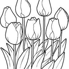 Small Picture How to Draw Spring Flower Coloring Page Color Luna