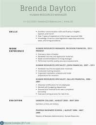 Cover Letter Cv Resume Format Word Ordinary What Is A Resume Cv