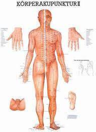 Acupuncture Chart Poster Body Acupuncture Ii Mini Poster German