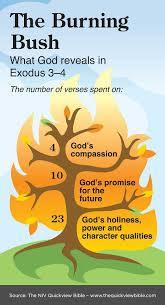 Burning Bush Bible Study Guide Online Bible Study Quick
