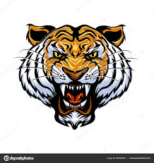 cartoon tiger face vector ilration