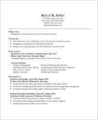 Business Administration Sample Resume Best Of Sample Resume For Professional Engineer Generalresumeorg