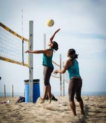Outdoor Volleyball Net Systems Comparison Chart