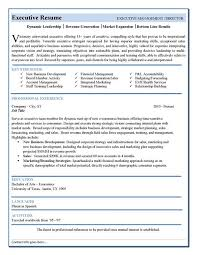 Executive Style Resume Template Free Resume Templates Executive Executive Resume