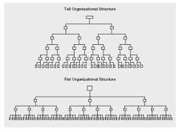Importance Of Span Of Control Organizational Structure