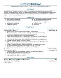 Hr Coordinator Resume Example Human Resources Sample Resumes