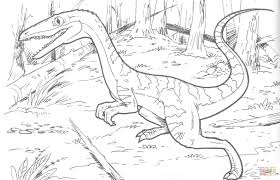 Small Picture Coelophysis Bauri Dinosaur coloring page Free Printable Coloring