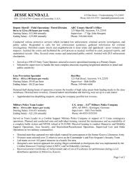 sample of government resume