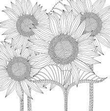 Bộ sưu tập 50 bức tranh tô màu hoa hướng dương đẹp nhất cho bé