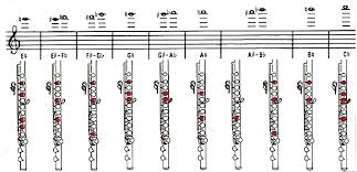 Piccolo Flute Finger Chart Unique Piccolo Finger Chart All Notes Instrument Fingering