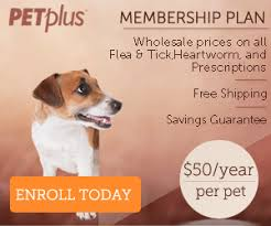 frontline for puppies. Related Products. Frontline Plus For Puppies G