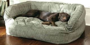 extra large pet beds. Modren Large Exotic Big Dog Beds Memory Foam Bed Large Sofa Extra  Couch To Extra Large Pet Beds
